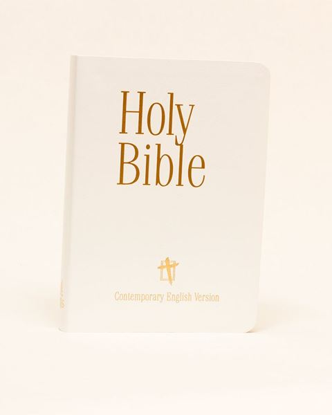 Picture of CEV Presentation Bible