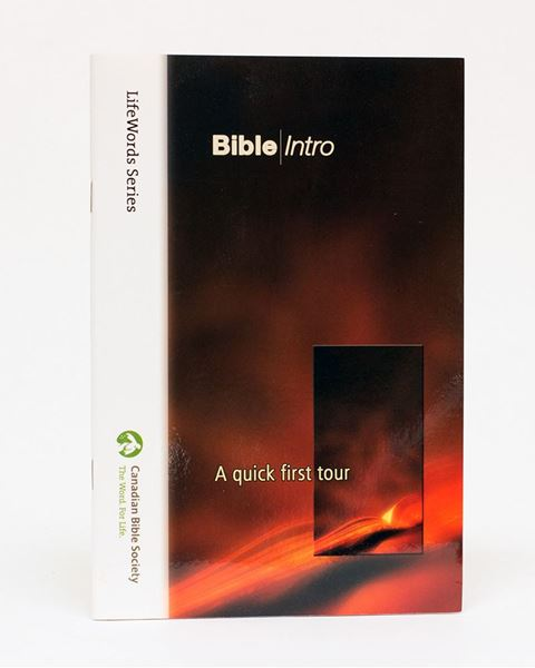 Picture of Bible Intro – LifeWords Series Large-print Edition