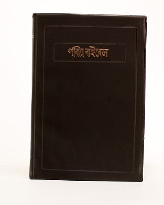 Picture of Bengali Bible