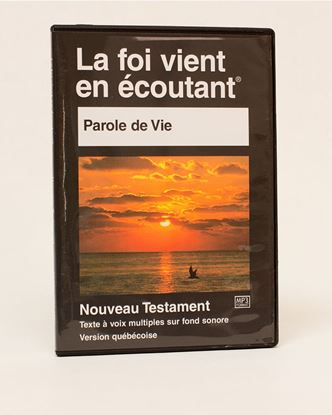 Picture of PDV MP3 Bible