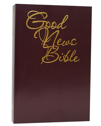 Picture of Good News Presentation Bible