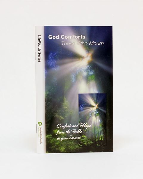 Picture of God Comforts Those Who Mourn EPUB – LifeWords Series