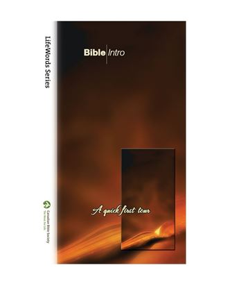 Picture of Bible Intro EPUB – LifeWords Series