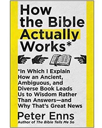 Picture of How the Bible Actually Works - Peter Enns